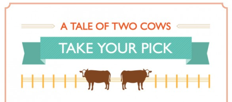 a-tale-of-two-cows-illustrated