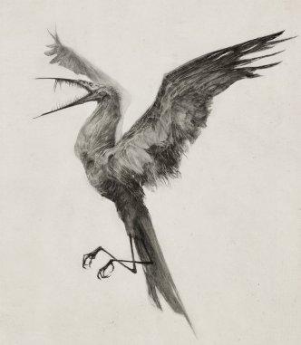 http://audreybenjaminsen.deviantart.com/art/Hunger-Bird-477283808
